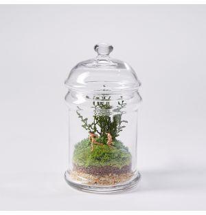 Terrarium Les Naturistes 14 cm
