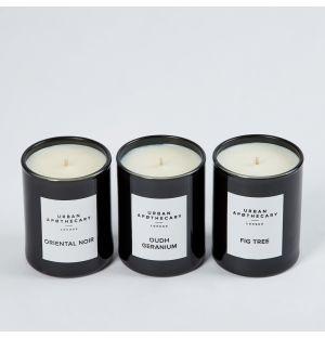 Trio de bougies parfumées – Oudh Geranium, Fig Tree & Oriental Noir