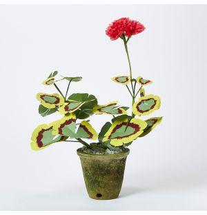 Plante en papier - Géranium - Small