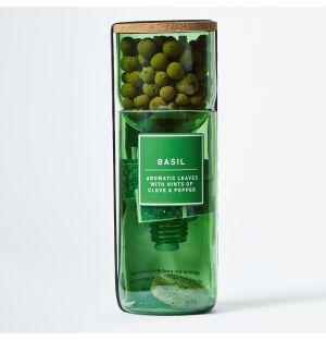 Kit basilic Hydro-Herb