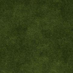 Velours Duro: Vert