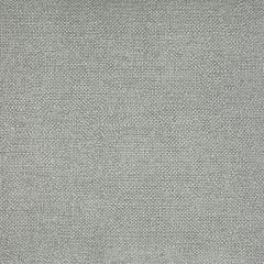 Chenille texturée: Argenté